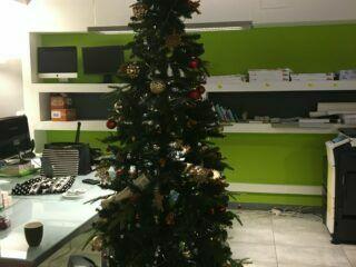 On Christmas Decorations and Pyjama Day